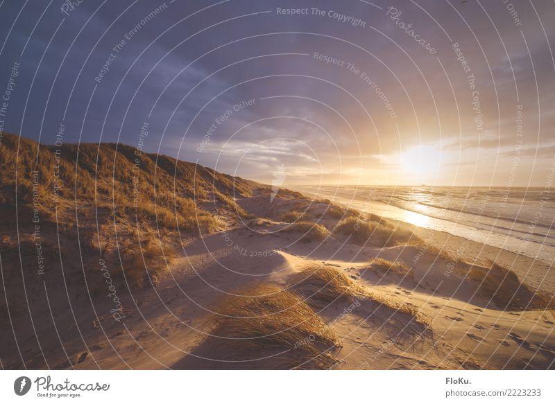 Goldenes Dänemark Himmel Natur Ferien & Urlaub & Reisen Wasser Landschaft Sonne Meer Ferne Strand Umwelt natürlich Küste Tourismus Freiheit Stimmung Sand