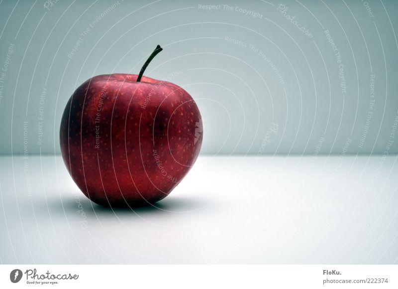 Der Fall Sünde schön Gesunde Ernährung rot kalt Lebensmittel Frucht glänzend liegen ästhetisch Ernährung süß rund lecker Bioprodukte Stengel Apfel