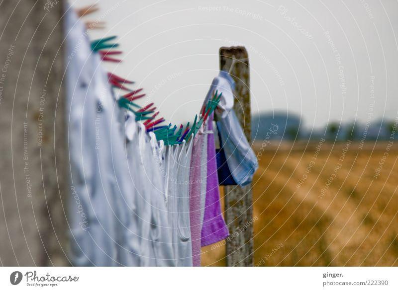 Anklammerung Natur schlechtes Wetter hängen trocknen Klammer Wäscheklammern Pfosten Wäscheleine frisch gewaschen Feld Wolken bedeckt grau weiß ländlich Sommer