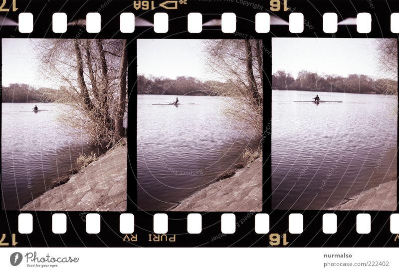 3mal1 Ruderer Lifestyle Freizeit & Hobby Sport Wassersport Sportler Rudern Mensch Kunst Natur Landschaft Pflanze Urelemente Flussufer Havel Weide muskulös nass