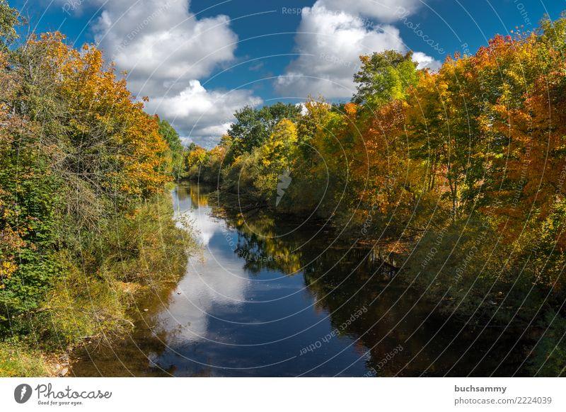 Herbst am Fluß Natur Landschaft Wolken Baum Blatt Fluss blau gelb grün Erde Europa Jahreszeiten Orange deutschland himmel Farbfoto mehrfarbig Außenaufnahme