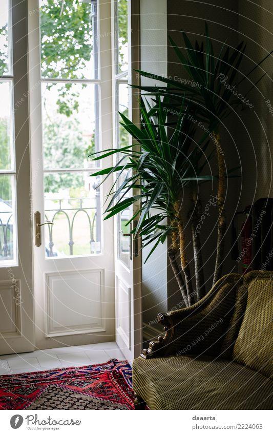 Türen zum Licht Lifestyle elegant Stil Design Freude Freizeit & Hobby Abenteuer Freiheit Häusliches Leben Wohnung Haus Traumhaus einrichten Stuhl Teppich Palme