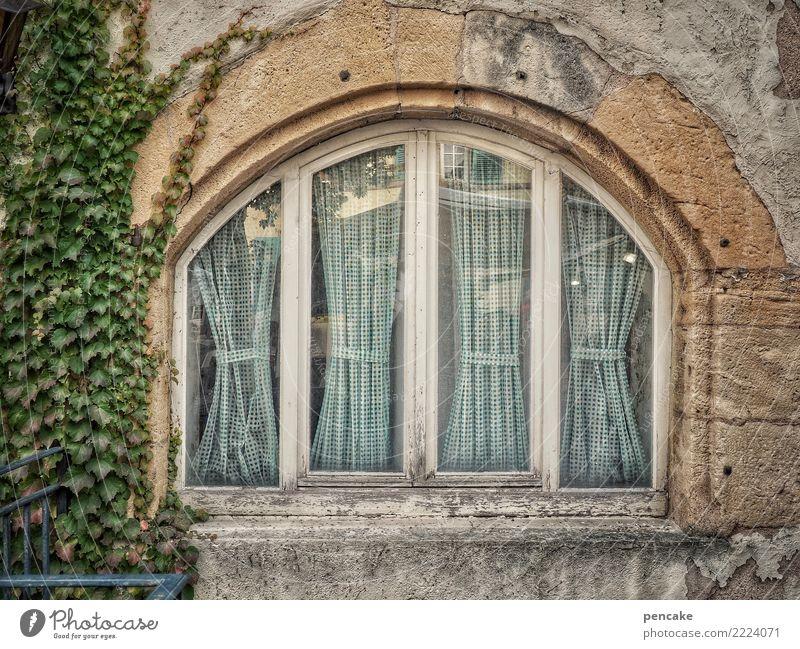 schwungvoll   bauen Altstadt Haus Fassade Fenster alt historisch Bogen Efeu Elsass Farbfoto Außenaufnahme Strukturen & Formen Menschenleer