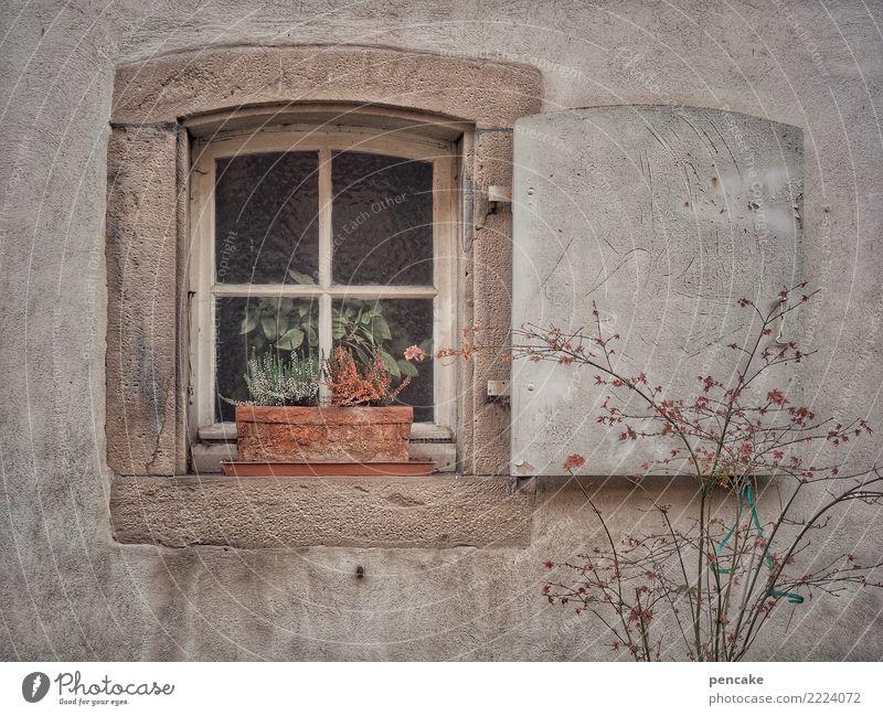 verlassen | time to say goodbye alt Stadt Haus Einsamkeit Fenster Herbst Traurigkeit retro trist einzigartig Altstadt trocken Müdigkeit Erschöpfung