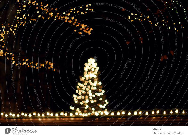 Ulmer Weihnachtsmarkt leuchten Weihnachtsbaum Lichterkette Farbfoto Außenaufnahme Menschenleer Nacht Kunstlicht Unschärfe Dekoration & Verzierung dunkel