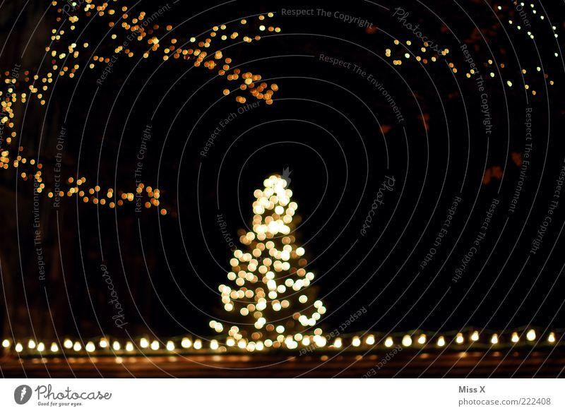Ulmer Weihnachtsmarkt Weihnachten & Advent dunkel Dekoration & Verzierung Weihnachtsbaum leuchten Lichterkette Ulm