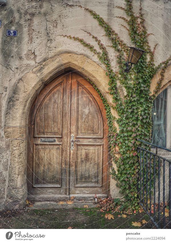 dominus vobiscum? Pflanze Altstadt Kirche Gebäude Architektur Mauer Wand Fassade Tür alt historisch Bogen Gotik Holztür Efeu 3 Elsass Farbfoto Außenaufnahme