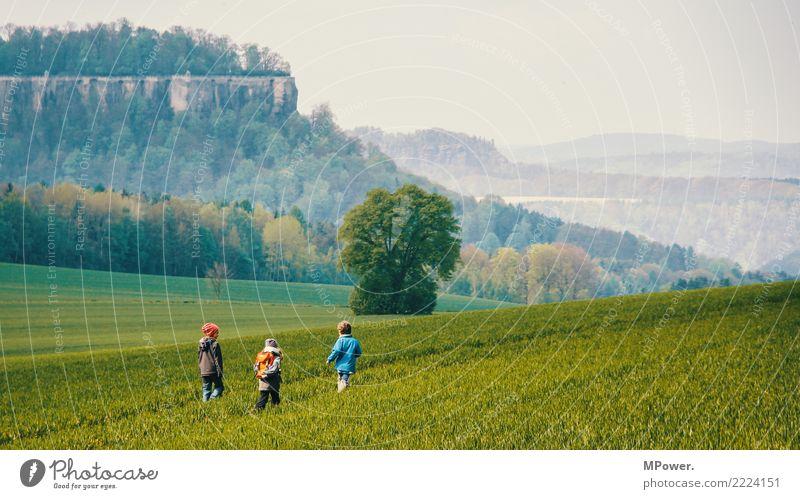 stromern Mensch Kind Freundschaft Kindheit Kindheitserinnerung Leben 3 3-8 Jahre Umwelt Landschaft Schönes Wetter Wiese Feld Wald Felsen Bewegung Spielen