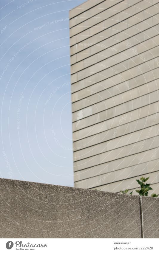 Kämpfernatur blau Blatt Wand Architektur grau Gebäude Mauer Fassade modern ästhetisch Kirche Europa einfach Bauwerk Dresden