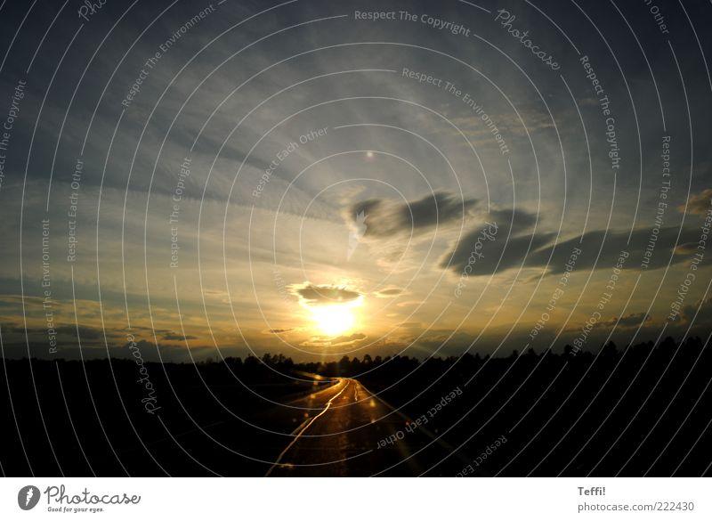 Sonniger Weltuntergang Himmel Sonne blau schön Wolken schwarz Ferne gelb Straße Glück grau Landschaft Stimmung Wetter gold frei
