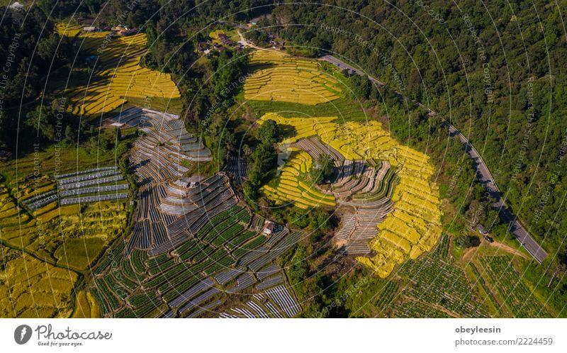 Luftaufnahmefoto von Fliegen Drohne Himmel Natur Ferien & Urlaub & Reisen schön grün Landschaft Baum Haus Wald Berge u. Gebirge Straße Umwelt klein Tourismus