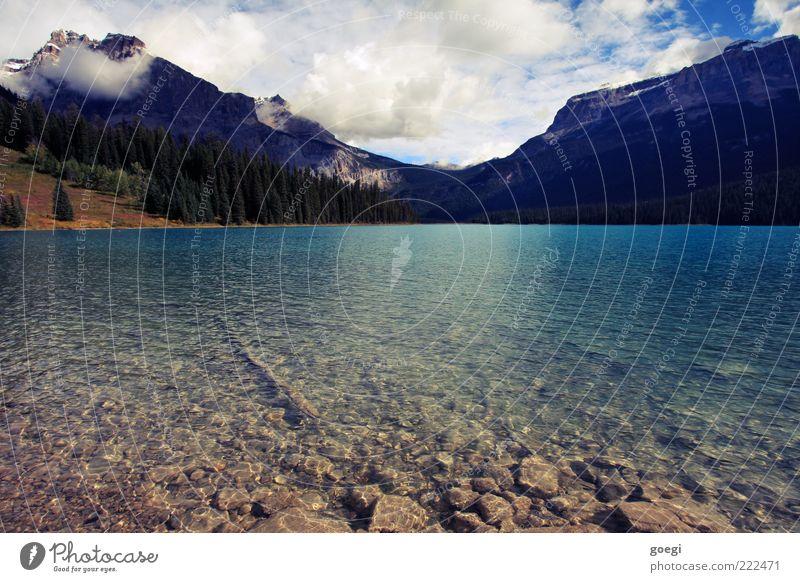 ein Tag am See Umwelt Natur Landschaft Wasser Himmel Wolken Schönes Wetter Wald Hügel Berge u. Gebirge Seeufer Emerald Lake Kanada Flüssigkeit ästhetisch