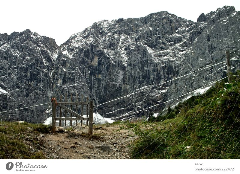 Tor zur ... Felsen Alpen Berge u. Gebirge Kalkalpen Karwendelgebirge Alm Drahtzaun dunkel grün schwarz weiß Einsamkeit Natur Wege & Pfade Menschenleer