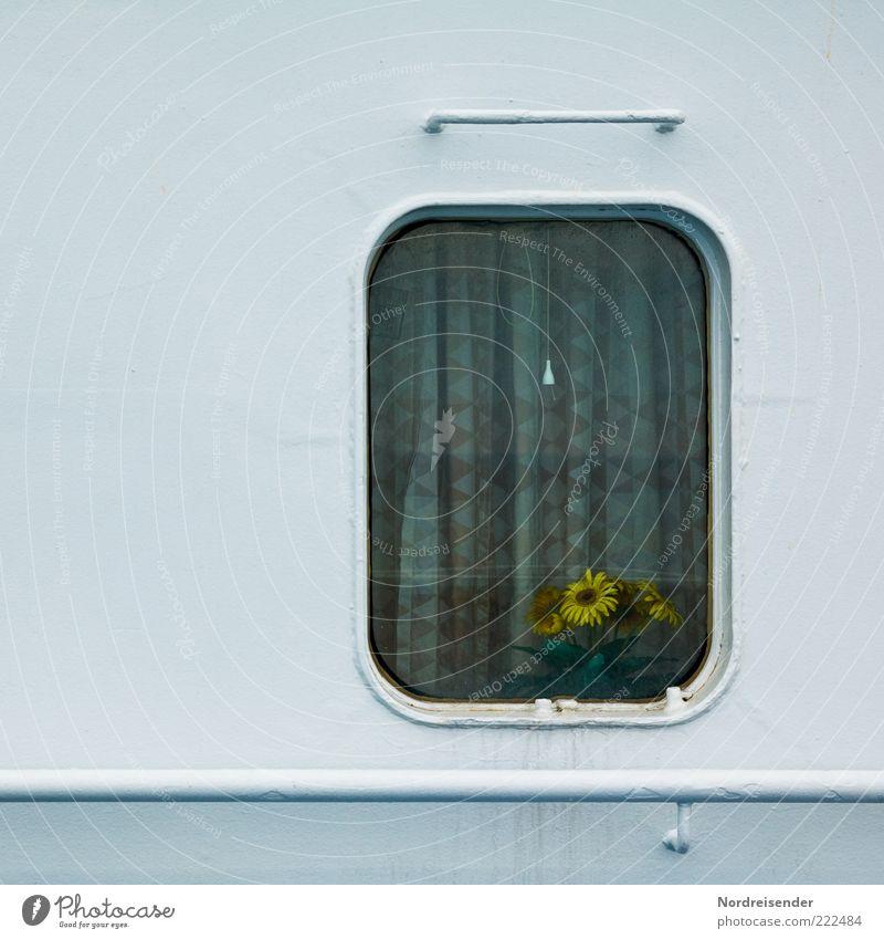 Pflegeleicht weiß Blume Einsamkeit Wand Fenster Mauer Metall Ordnung Freizeit & Hobby einfach Kitsch Häusliches Leben Sehnsucht Kunststoff Stahl Schifffahrt