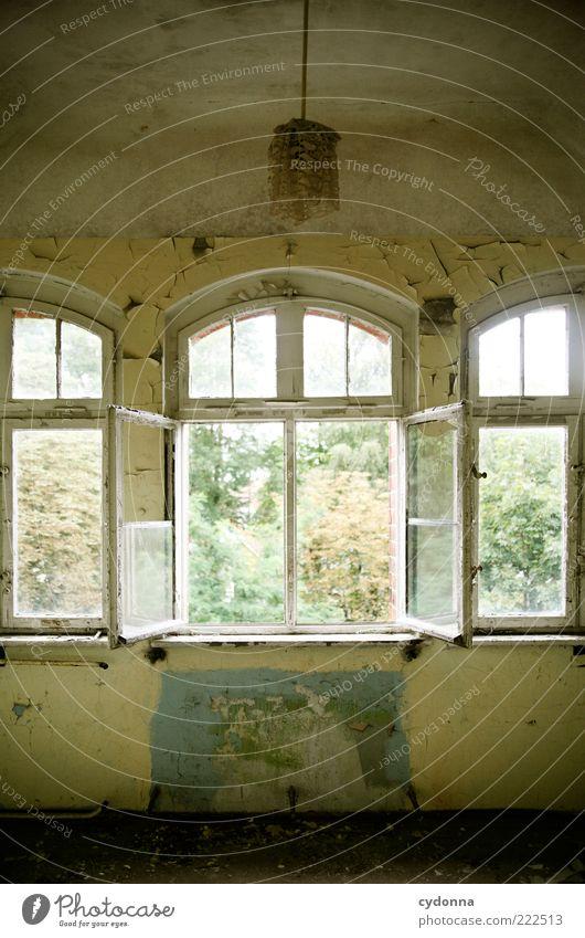 Offen alt ruhig Fenster Lampe Raum dreckig offen Wandel & Veränderung Vergänglichkeit verfallen Vergangenheit Verfall schäbig Ruine stagnierend Durchblick
