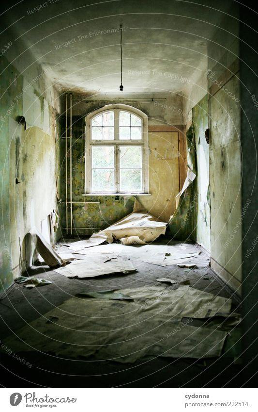 Lieblingszimmer Tapete Raum Mauer Wand Fenster einzigartig Endzeitstimmung ruhig stagnierend Verfall Vergangenheit Vergänglichkeit Wandel & Veränderung