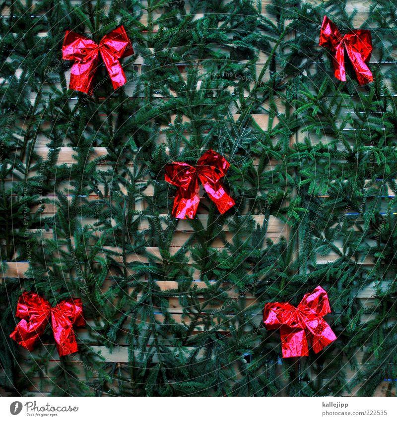themenhintergrund Feste & Feiern glänzend Weihnachtsdekoration Schleife Tannenzweig Wand Schmuck Wandschmuck Wandverkleidung rot Farbfoto mehrfarbig