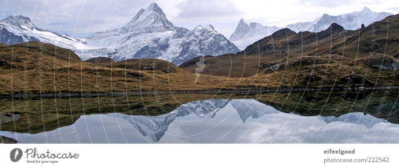 Bernese Alps, Bachsee, Schreckhorn Natur Landschaft Wasser Alpen Berge u. Gebirge Gipfel Schneebedeckte Gipfel Gletscher See fantastisch gigantisch Stimmung