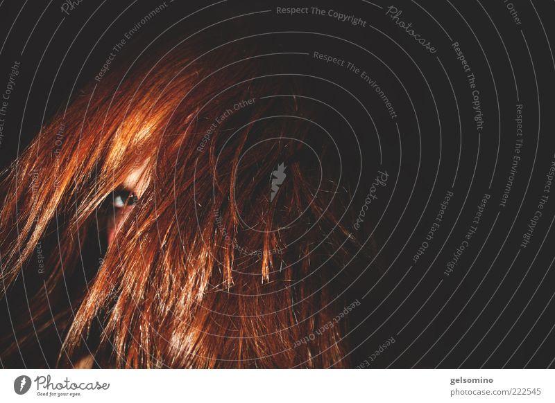 Gesicht im Haar Mensch rot Auge feminin Erotik Haare & Frisuren glänzend frech langhaarig rothaarig Vor dunklem Hintergrund