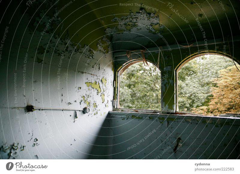Spur von Herbst Raum Wald Haus Mauer Wand Fenster ästhetisch Einsamkeit einzigartig geheimnisvoll Leben ruhig schön Verfall Vergangenheit Vergänglichkeit
