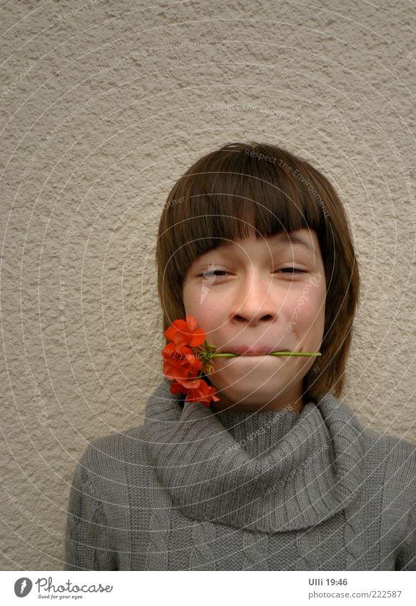 Miss Geranie. Kind Jugendliche schön Blume rot Freude Mädchen Gesicht feminin lustig grau Kopf Stimmung frisch Kindheit stehen
