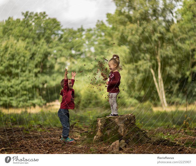 Herbst in Lüneburger Heide Kind Mensch Natur Ferien & Urlaub & Reisen grün Landschaft Freude Mädchen Wald lustig natürlich Junge Glück Spielen Tourismus