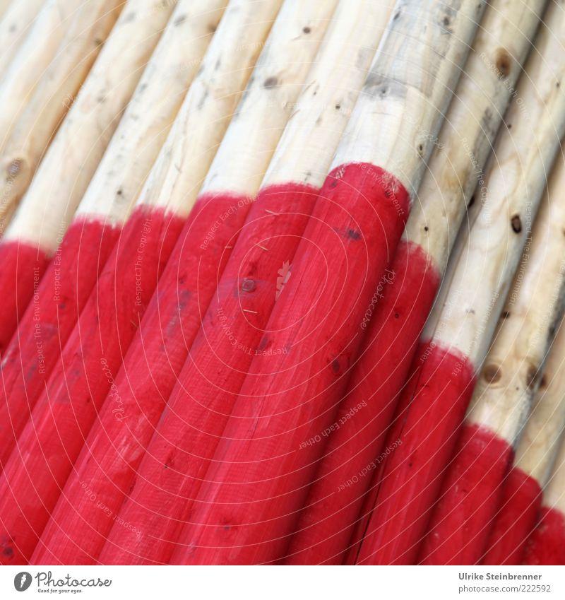 Riesenzahnstocher Messinstrument Schilder & Markierungen Messlatte Altimeter Messung Gradmesser Schneemarkierung Holz liegen Baumstamm Pfosten rot Farbstoff