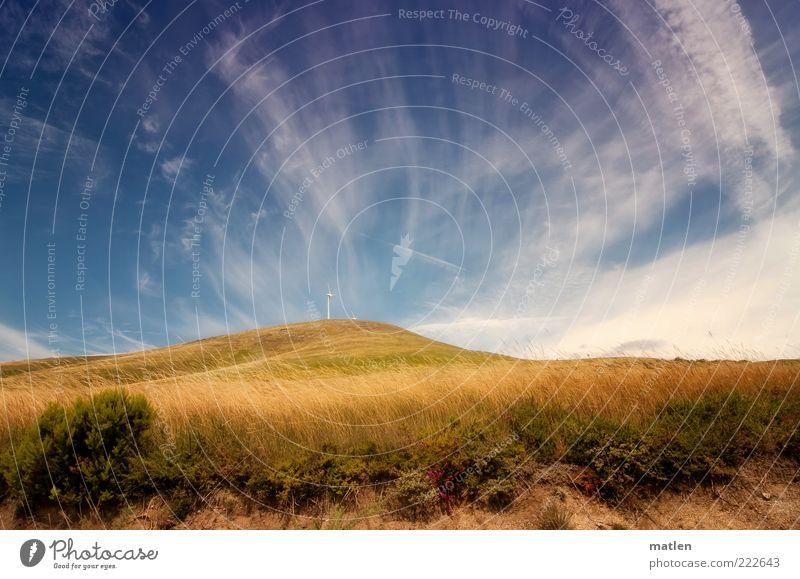 automne Natur Landschaft Erde Sand Luft Himmel Herbst Schönes Wetter Pflanze Gras Sträucher Hügel heiß blau gold Bergheide mehrfarbig Außenaufnahme Licht