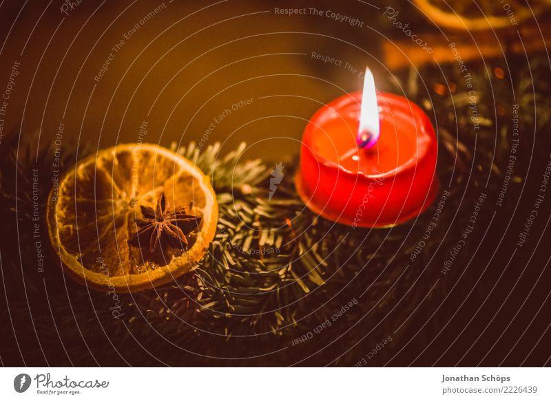 Adventskranz III Weihnachten & Advent Detailaufnahme Kerzendocht Docht Flamme Licht Makroaufnahme Nahaufnahme Reisig Stimmung Tradition Wachs Zimt Zitrone
