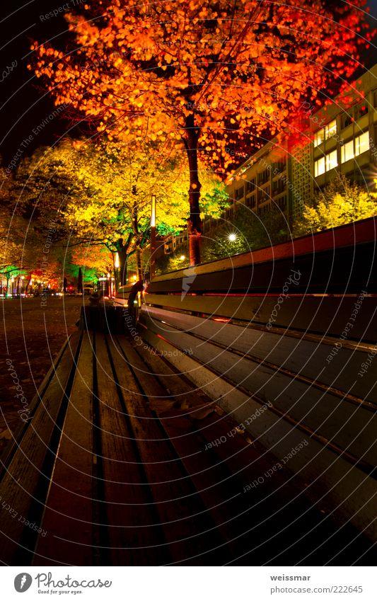 Lichtbank weiß Baum Stadt grün rot schwarz gelb Berlin Gebäude Beleuchtung Bank Hauptstadt Nacht