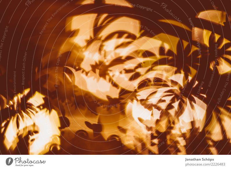 Weihnachtsdeko mit Bokeh VIII Kind Weihnachten & Advent Wärme Stimmung Häusliches Leben hell leuchten Dekoration & Verzierung Hoffnung Tradition selbstgemacht