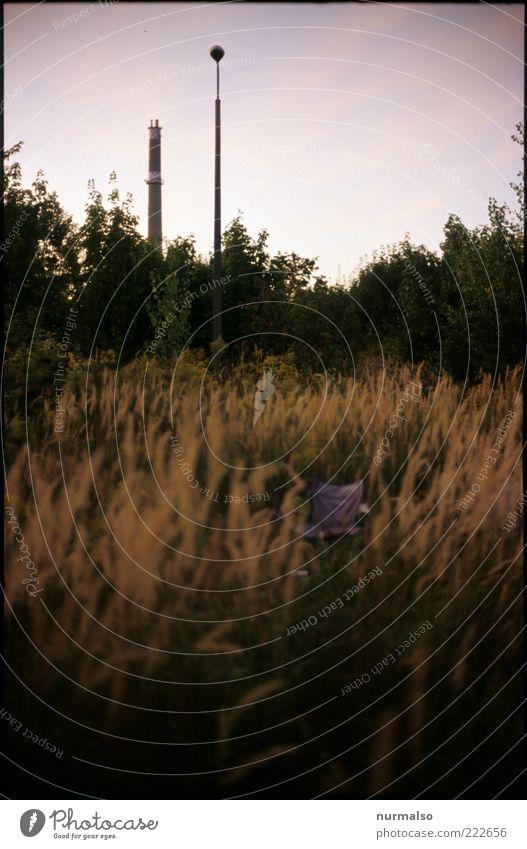 Ruhesitz Umwelt Natur Landschaft Pflanze Gras Wiese genießen Geborgenheit ruhig Schornstein Straßenbeleuchtung Farbfoto Abend Dämmerung Silhouette Sonnenaufgang