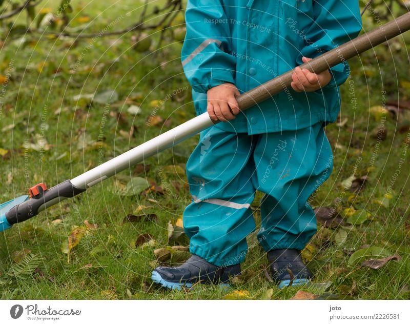 stolz Freude Zufriedenheit Kinderspiel Garten lernen Gartenarbeit Kleinkind 1-3 Jahre Herbst Blatt Wiese Gummistiefel Mütze entdecken warten niedlich Erfolg