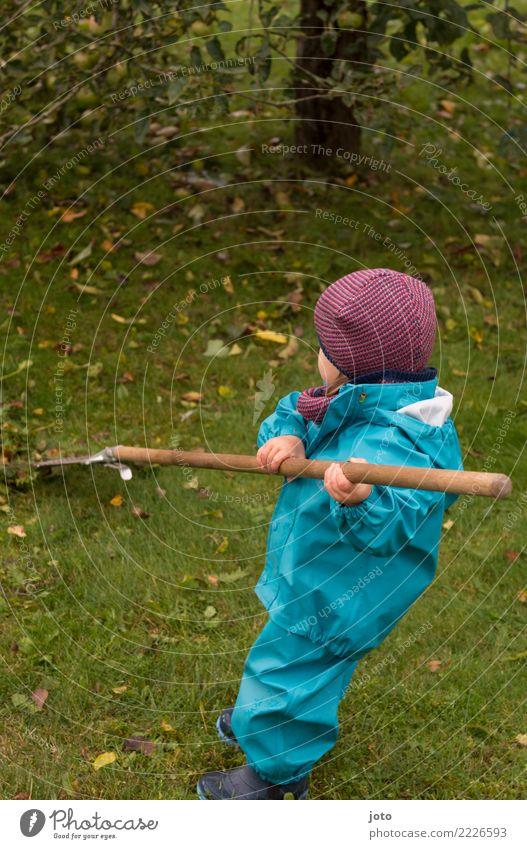 helfen Kind Blatt Freude Herbst Wiese Garten Zufriedenheit lernen niedlich Hilfsbereitschaft entdecken Mütze Kleinkind Herbstlaub herbstlich anstrengen
