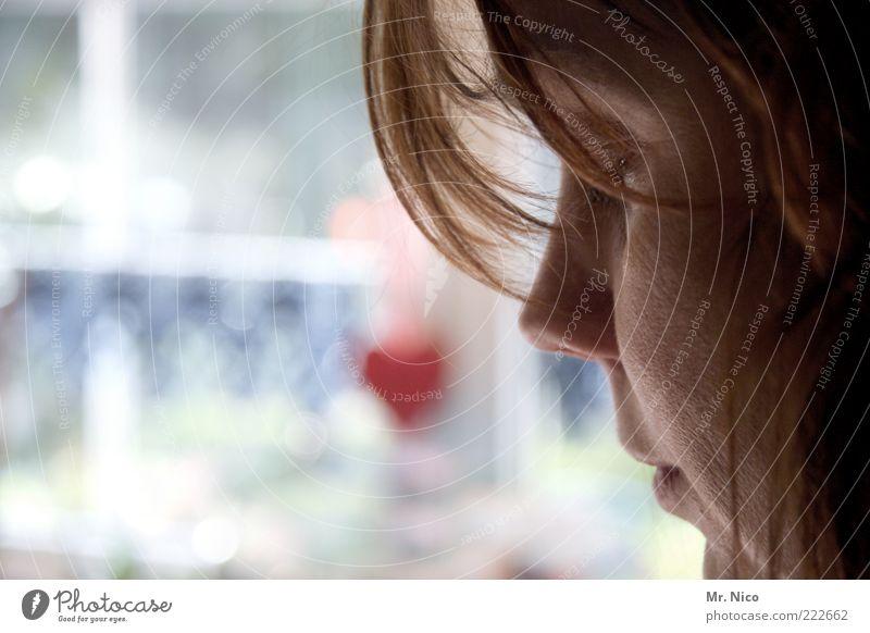 view Frau schön Gesicht ruhig Leben feminin Fenster Haare & Frisuren träumen Kopf Traurigkeit Denken Mund Herz Erwachsene Haut