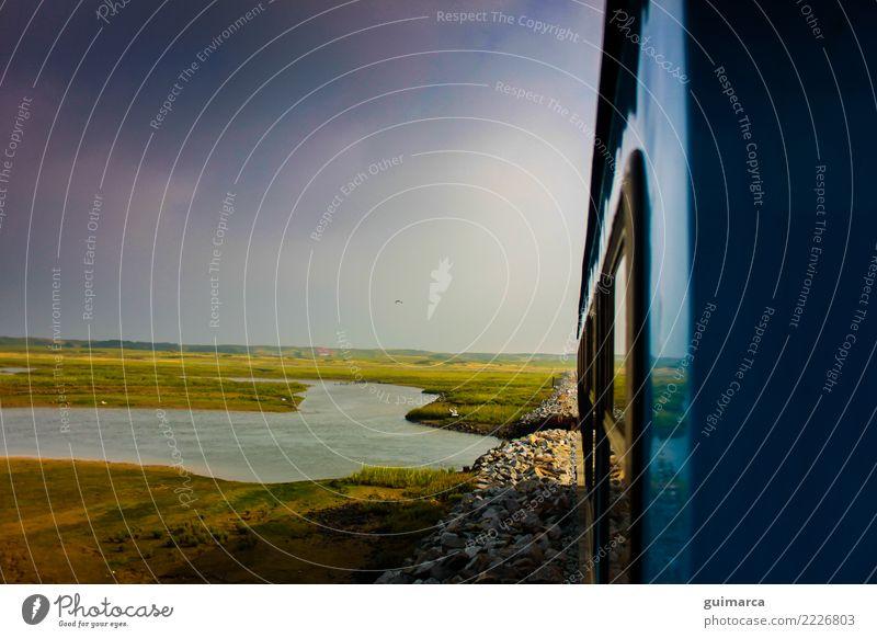 Blick vom Zug auf Wangerooge Natur Erde Himmel Wolken Sonne Sommer Klima Wetter Wind Pflanze Grünpflanze Wildpflanze Wiese Küste Nordsee See Fluss Fischerdorf