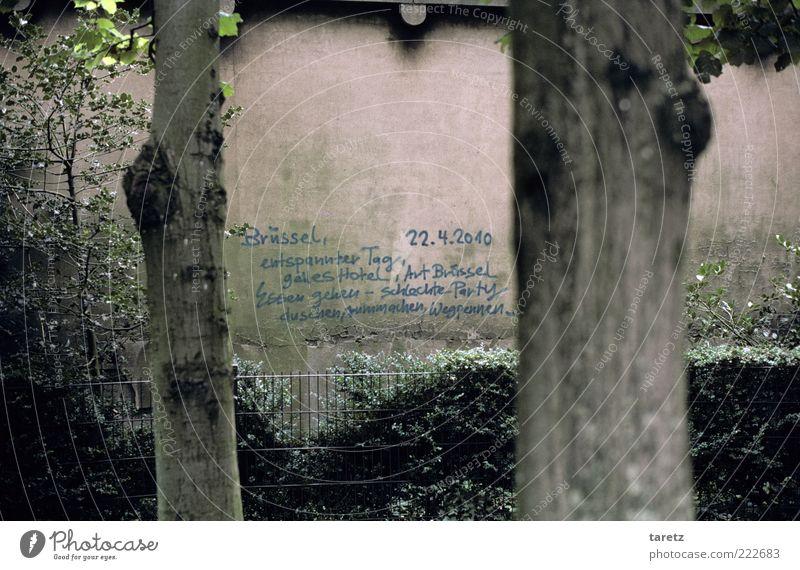 duschen, rummachen, wegpennen,... Baum Ferne Wand Mauer Park Graffiti Ausflug authentisch Sträucher beobachten Langeweile Baumstamm Zettel Erinnerung Mitteilung Hecke
