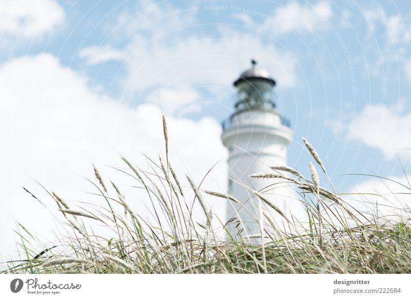Gras über die Sache Himmel Pflanze Sommer Ferien & Urlaub & Reisen Wolken Luft hell Wind Ausflug frisch Sicherheit Hoffnung Tourismus Klima Turm