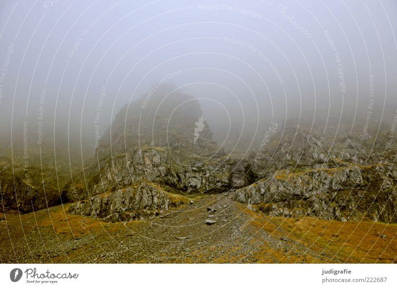 Island Umwelt Natur Landschaft Erde Klima Nebel Felsen Berge u. Gebirge Westfjord bedrohlich dunkel kalt natürlich Stimmung Farbfoto Gedeckte Farben