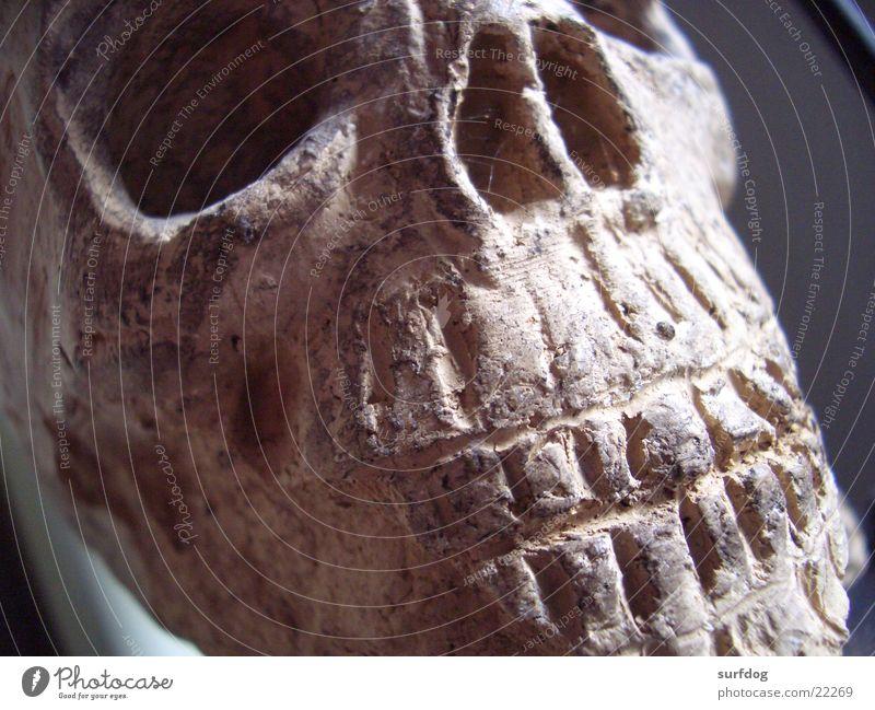 Tonschädel braun Handwerk Kopf Tod Gebiss Schädel Nahaufnahme