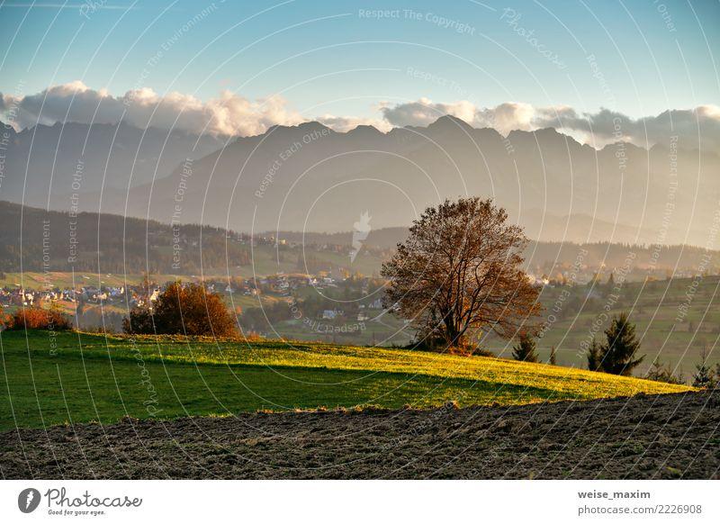 Sonniges Abendpanorama des schönen Herbstes. Tatra-Gebirge Natur Ferien & Urlaub & Reisen blau Sommer Stadt grün Landschaft Haus Wolken Wald Berge u. Gebirge