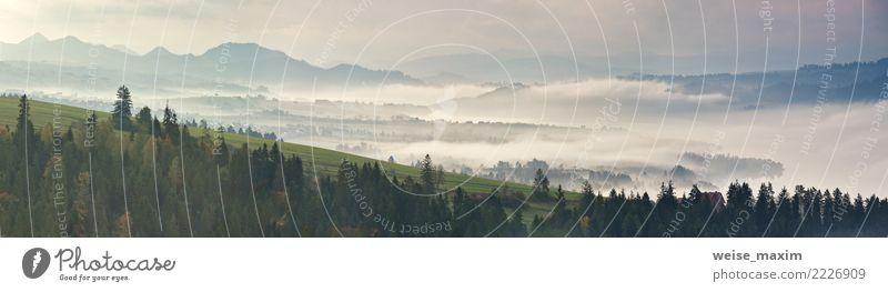 Nebeliger Morgen des schönen Herbstes, Polen. Misty Herbst See. Natur Ferien & Urlaub & Reisen Pflanze Sommer grün Landschaft Baum Wolken Ferne Wald