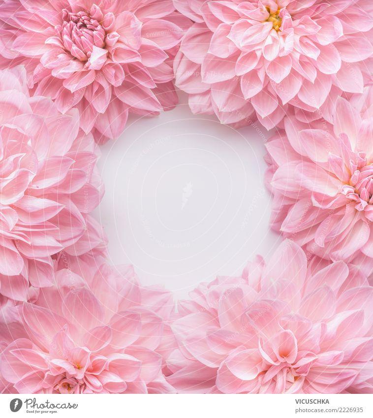 pastell rosa blumen rahmen ein lizenzfreies stock foto von photocase. Black Bedroom Furniture Sets. Home Design Ideas