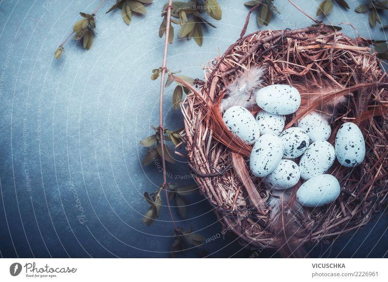 Osternest mit Eier Stil Design Freude Dekoration & Verzierung Feste & Feiern Natur Tradition Hintergrundbild Nest Symbole & Metaphern Text Vogeleier Horst blau