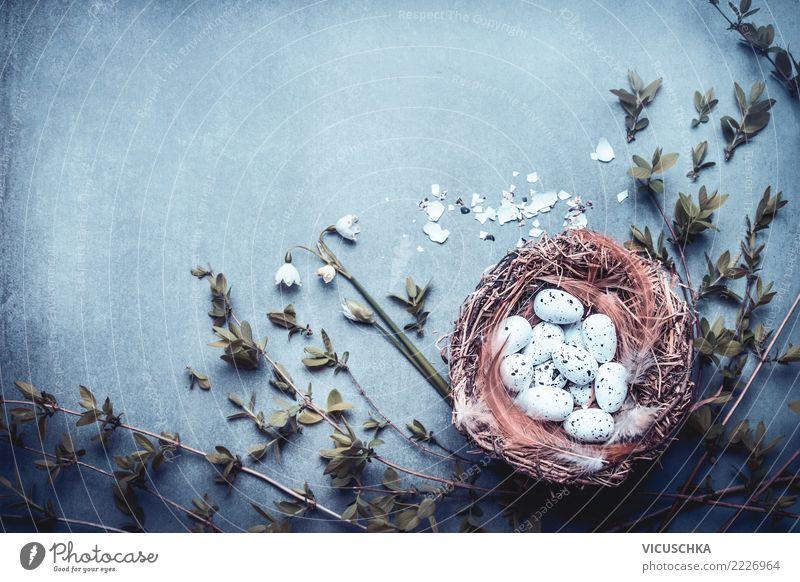 Ostern Hintergrund mit Nest, Eier, Feder und Frühlingszweigen Stil Design Freude Dekoration & Verzierung Feste & Feiern Blumenstrauß Zeichen Fahne Tradition