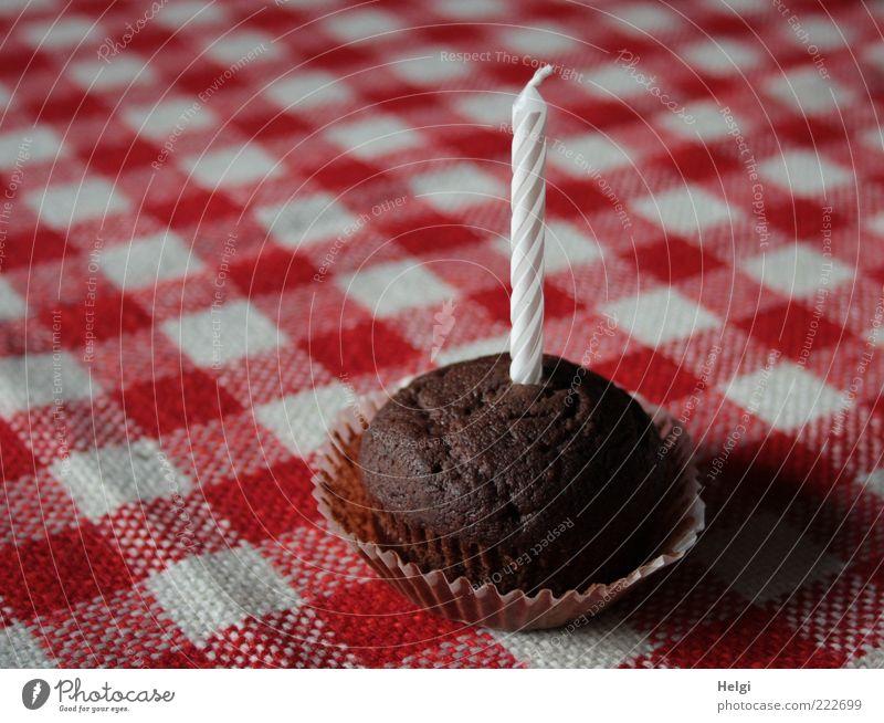 kleiner Schokoladenkuchen mit einer Kerze auf einer rot-weiß-karierten Tischdecke Lebensmittel Teigwaren Backwaren Kuchen Ernährung Dekoration & Verzierung