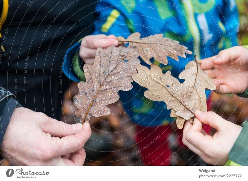 Dreierteam harmonisch Zufriedenheit Sinnesorgane Kindererziehung Kindergarten lernen Kleinkind Mädchen Junge 3 Mensch Natur Herbst beobachten braun