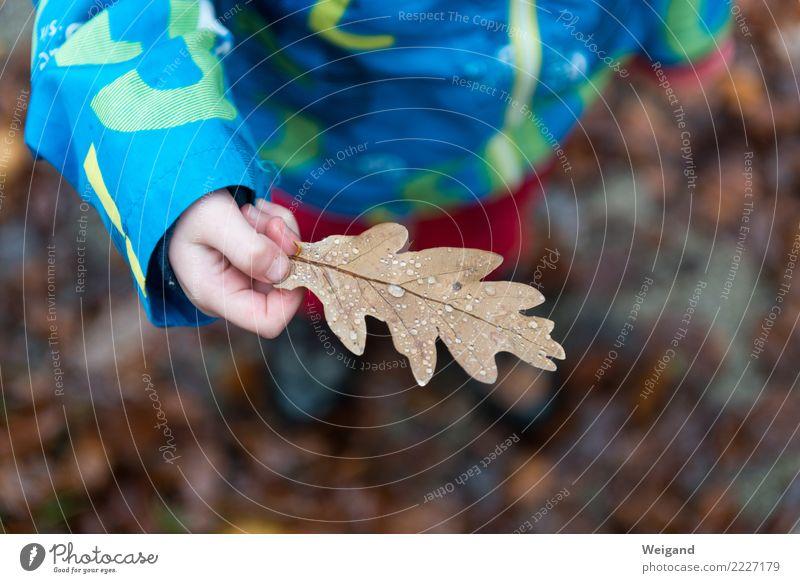 Perlenblatt Leben Wohlgefühl Sinnesorgane ruhig Meditation Kindererziehung Kindergarten Kleinkind Mädchen Junge Kindheit träumen Freundlichkeit Fröhlichkeit