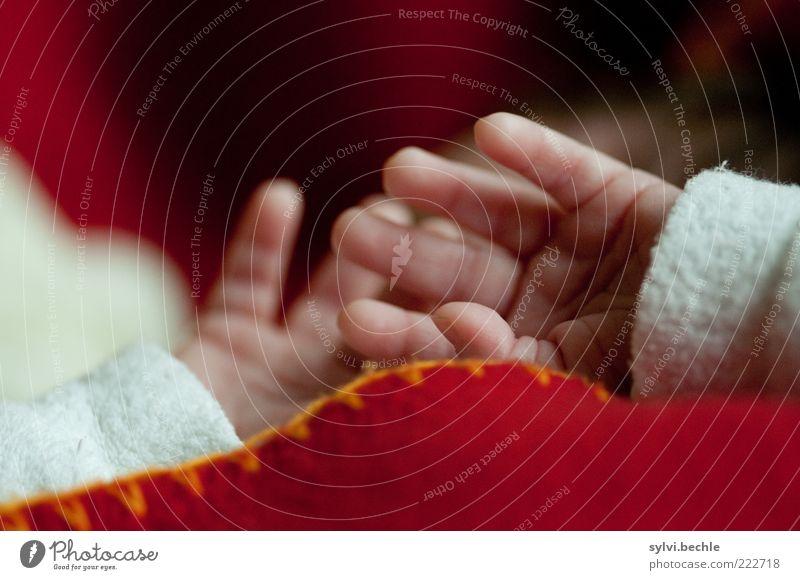 Hier gibt es nichts zu sehen! Mensch Kind Hand weiß rot Leben Erholung Baby klein Haut Finger schlafen liegen Kindheit Hautfalten zart