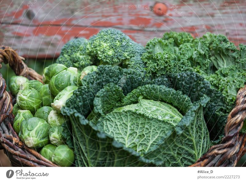 die Gesündesten grün Kohlsorten im Korb Lebensmittel Gemüse Salat Salatbeilage Rosenkohl Wirsing Grünkohl Grünkohlblatt Brokkoli Ernährung Bioprodukte